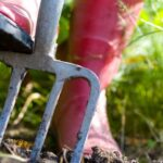 Miből áll a kertfenntartás?